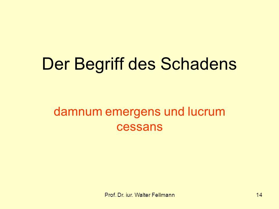Prof. Dr. iur. Walter Fellmann14 Der Begriff des Schadens damnum emergens und lucrum cessans
