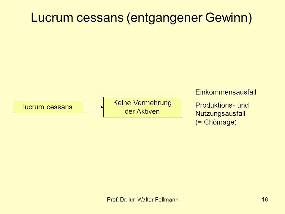 Prof. Dr. iur. Walter Fellmann16 Lucrum cessans (entgangener Gewinn) lucrum cessans Keine Vermehrung der Aktiven Einkommensausfall Produktions- und Nu