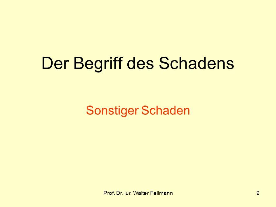 Prof. Dr. iur. Walter Fellmann9 Der Begriff des Schadens Sonstiger Schaden