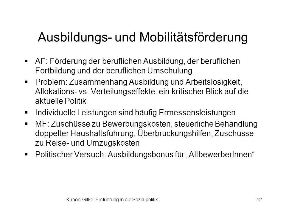 Kubon-Gilke: Einführung in die Sozialpolitik42 Ausbildungs- und Mobilitätsförderung AF: Förderung der beruflichen Ausbildung, der beruflichen Fortbildung und der beruflichen Umschulung Problem: Zusammenhang Ausbildung und Arbeitslosigkeit, Allokations- vs.