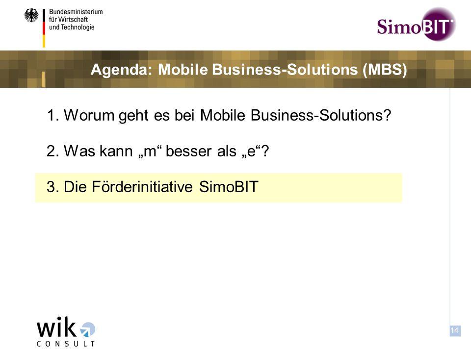 13 Frage: Haben sie bezüglich des Einsatzes mobiler Datennutzung in Ihrem Unternehmen Bedenken hinsichtlich der Datensicherheit.