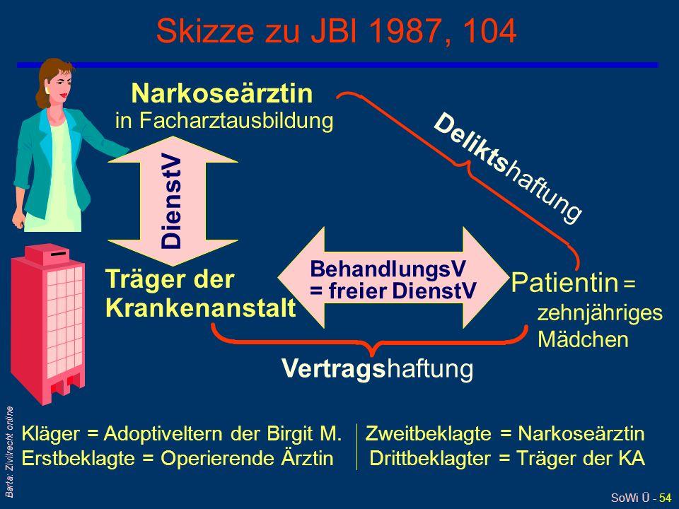 SoWi Ü - 53 Barta: Zivilrecht online Aufklärungspflicht (6): Schönheitsoperationen qReziproker Zusammenhang zwischen Indikation (zB der Operation) und