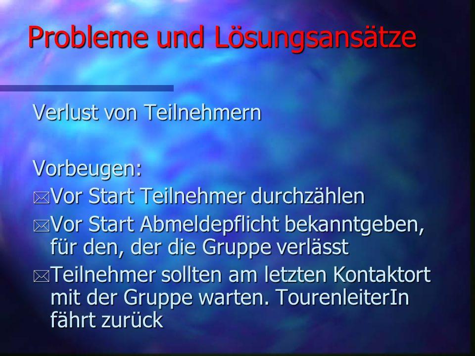 Probleme und Lösungsansätze Bei Unfällen: * Ruhe bewahren - Unfallstelle absichern * Erste Hilfe leisten * bei schweren Verletzungen - Notruf (Handy)