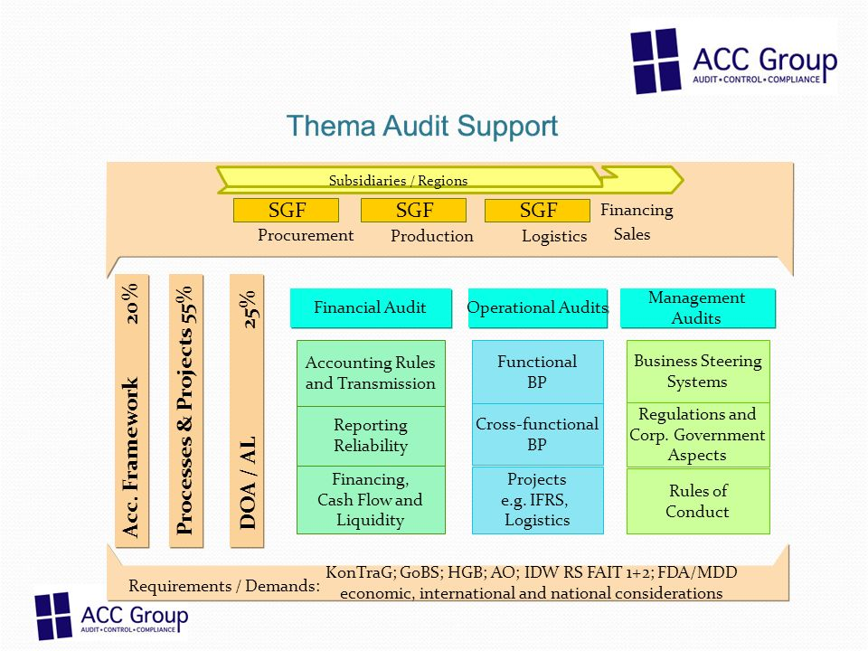 Financing Financial Audit Operational Audits Management Audits Functional BP Cross-functional BP Business Steering Systems KonTraG; GoBS; HGB; AO; IDW