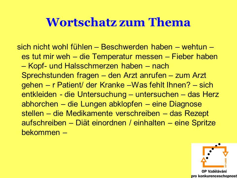 Wortschatz zum Thema sich nicht wohl fühlen – Beschwerden haben – wehtun – es tut mir weh – die Temperatur messen – Fieber haben – Kopf- und Halsschme