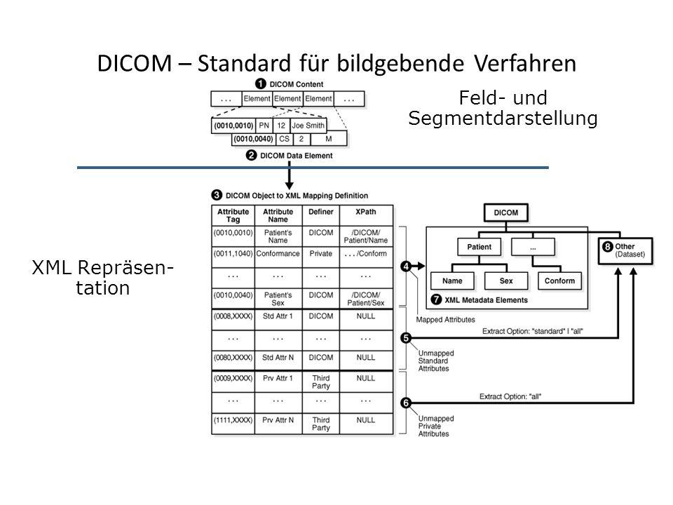 DICOM – Standard für bildgebende Verfahren Feld- und Segmentdarstellung XML Repräsen- tation