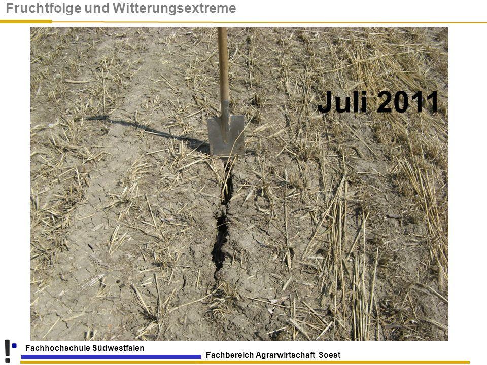 Fachbereich Agrarwirtschaft Soest Fachhochschule Südwestfalen Juli 2011 Fruchtfolge und Witterungsextreme