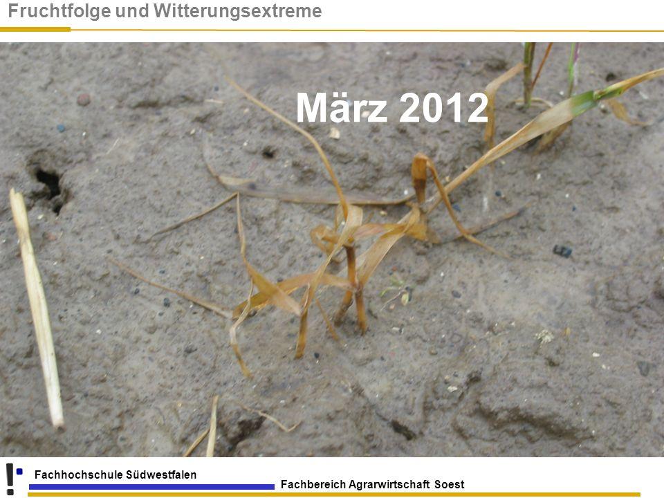 Fachbereich Agrarwirtschaft Soest Fachhochschule Südwestfalen März 2012 Fruchtfolge und Witterungsextreme