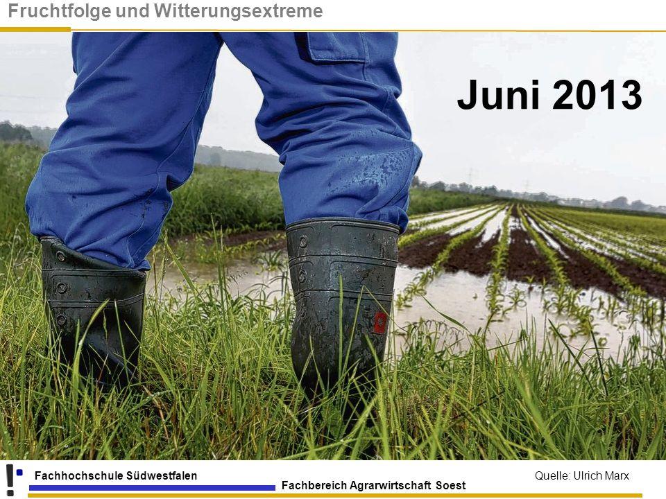 Fachbereich Agrarwirtschaft Soest Fachhochschule Südwestfalen Juni 2013 Quelle: Ulrich Marx Fruchtfolge und Witterungsextreme