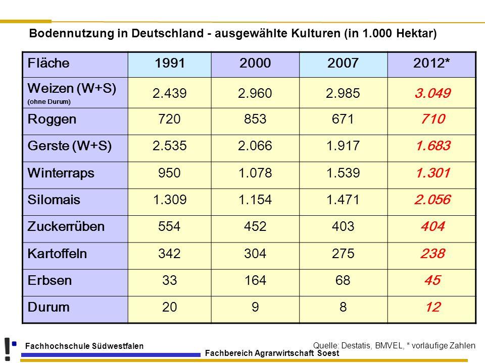 Fachbereich Agrarwirtschaft Soest Fachhochschule Südwestfalen Fläche1991200020072012* Weizen (W+S) (ohne Durum) 2.4392.9602.9853.049 Roggen72085367171