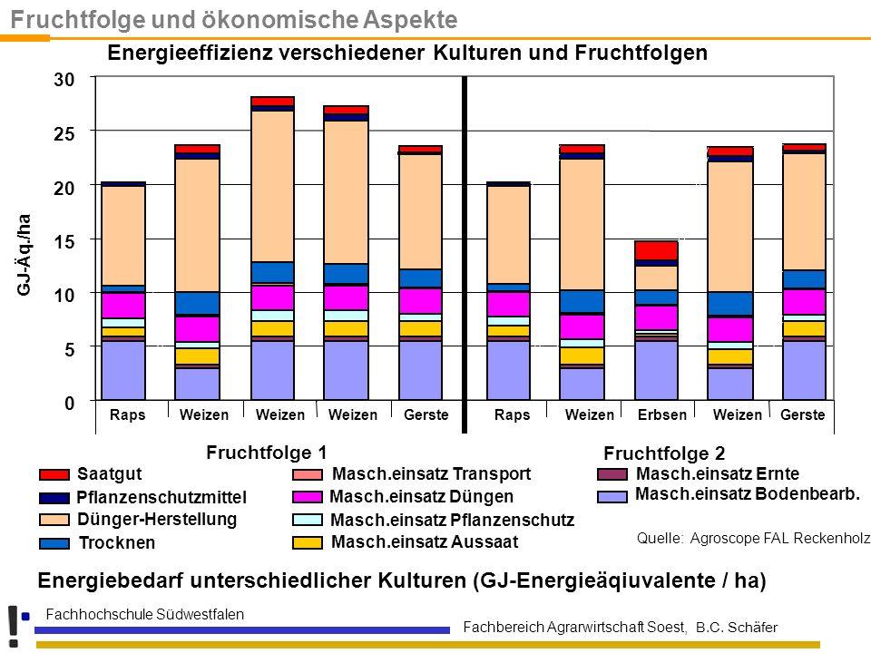 Fachbereich Agrarwirtschaft Soest, B.C. Schäfer Fachhochschule Südwestfalen Energiebedarf unterschiedlicher Kulturen (GJ-Energieäqiuvalente / ha) Saat