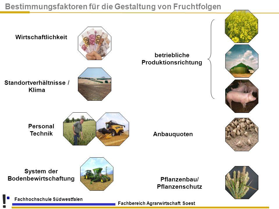 Fachbereich Agrarwirtschaft Soest Fachhochschule Südwestfalen Bestimmungsfaktoren für die Gestaltung von Fruchtfolgen Wirtschaftlichkeit Pflanzenbau/