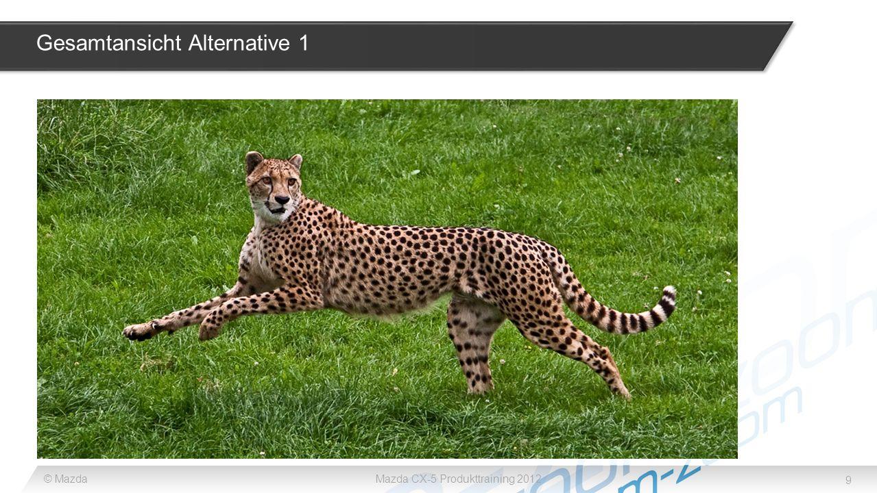 9 © MazdaMazda CX-5 Produkttraining 2012 Gesamtansicht Alternative 1