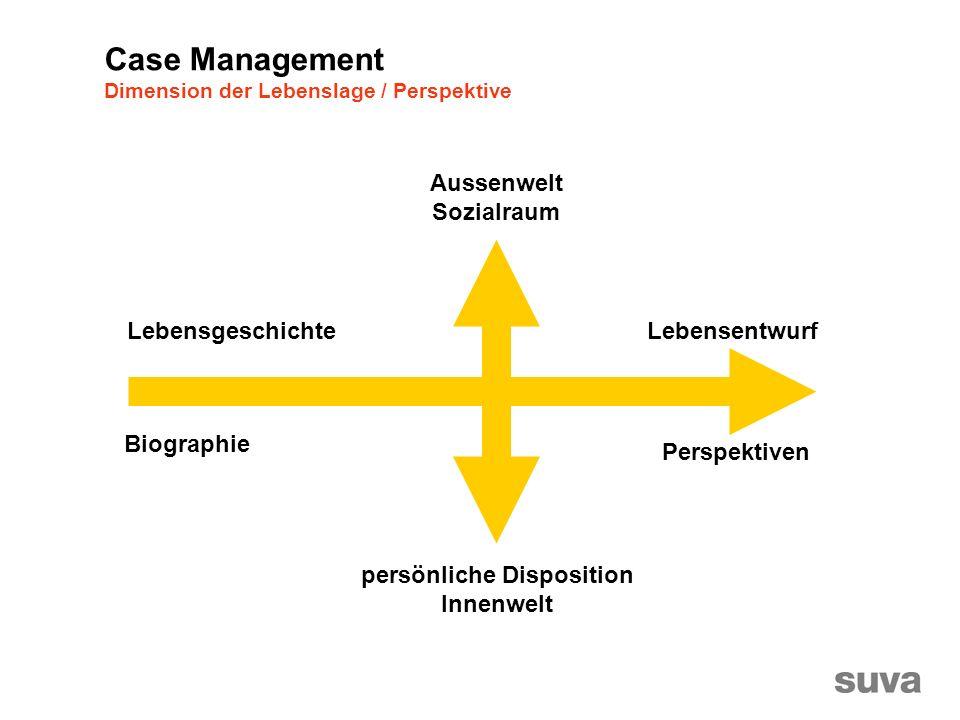 Lebensgeschichte Biographie Lebensentwurf Perspektiven Aussenwelt Sozialraum persönliche Disposition Innenwelt Case Management Dimension der Lebenslage / Perspektive