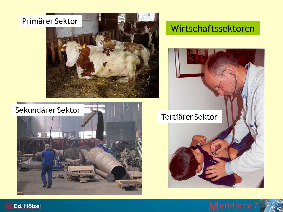 Primärer Sektor Sekundärer Sektor Tertiärer Sektor Wirtschaftssektoren
