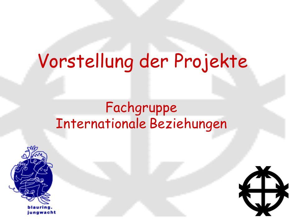 Vorstellung der Projekte Fachgruppe Internationale Beziehungen
