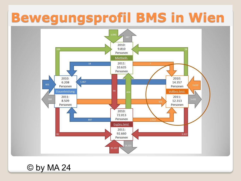 Bewegungsprofil BMS in Wien © by MA 24