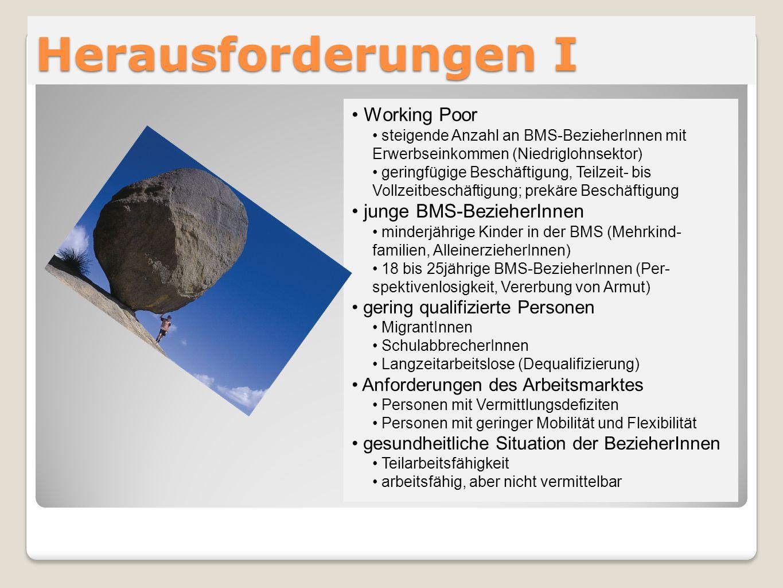 Herausforderungen I Working Poor steigende Anzahl an BMS-BezieherInnen mit Erwerbseinkommen (Niedriglohnsektor) geringfügige Beschäftigung, Teilzeit-