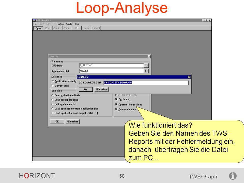 HORIZONT 58 TWS/Graph Loop-Analyse Wie funktioniert das? Geben Sie den Namen des TWS- Reports mit der Fehlermeldung ein, danach übertragen Sie die Dat