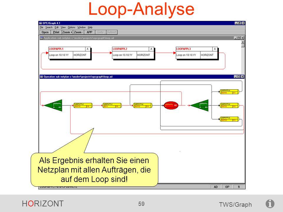 HORIZONT 59 TWS/Graph Loop-Analyse Als Ergebnis erhalten Sie einen Netzplan mit allen Aufträgen, die auf dem Loop sind!