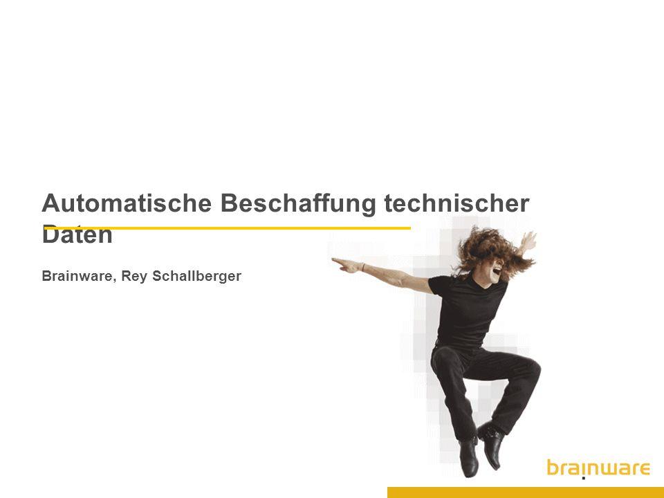 Automatische Beschaffung technischer Daten Brainware, Rey Schallberger