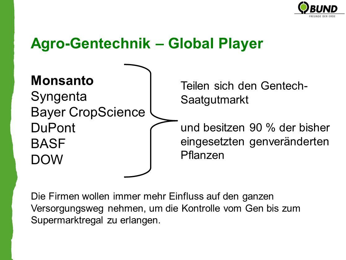 Agro-Gentechnik – Global Player Monsanto Syngenta Bayer CropScience DuPont BASF DOW Teilen sich den Gentech- Saatgutmarkt und besitzen 90 % der bisher