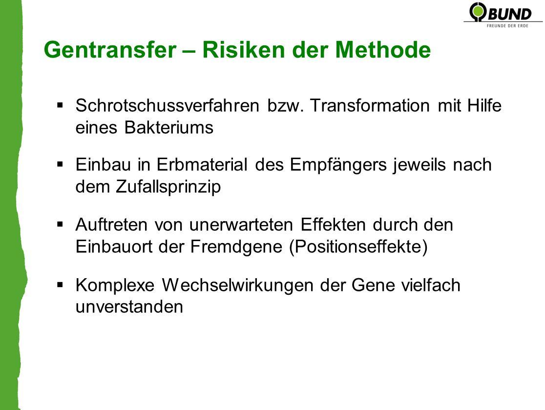 Gentransfer – Risiken der Methode Schrotschussverfahren bzw. Transformation mit Hilfe eines Bakteriums Einbau in Erbmaterial des Empfängers jeweils na