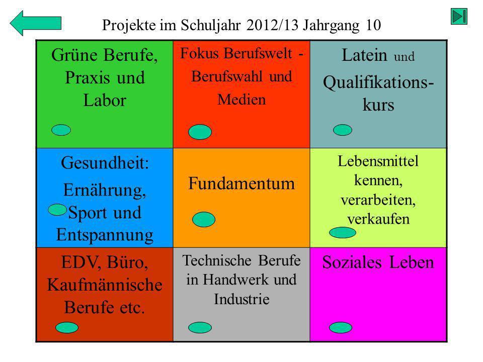 Projekte im Schuljahr 2012/13 Jahrgang 10 Grüne Berufe, Praxis und Labor Fokus Berufswelt - Berufswahl und Medien Latein und Qualifikations- kurs Gesu