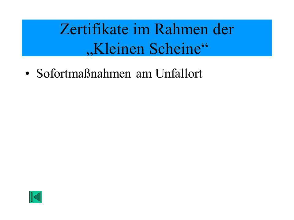 Zertifikate im Rahmen der Kleinen Scheine Sofortmaßnahmen am Unfallort
