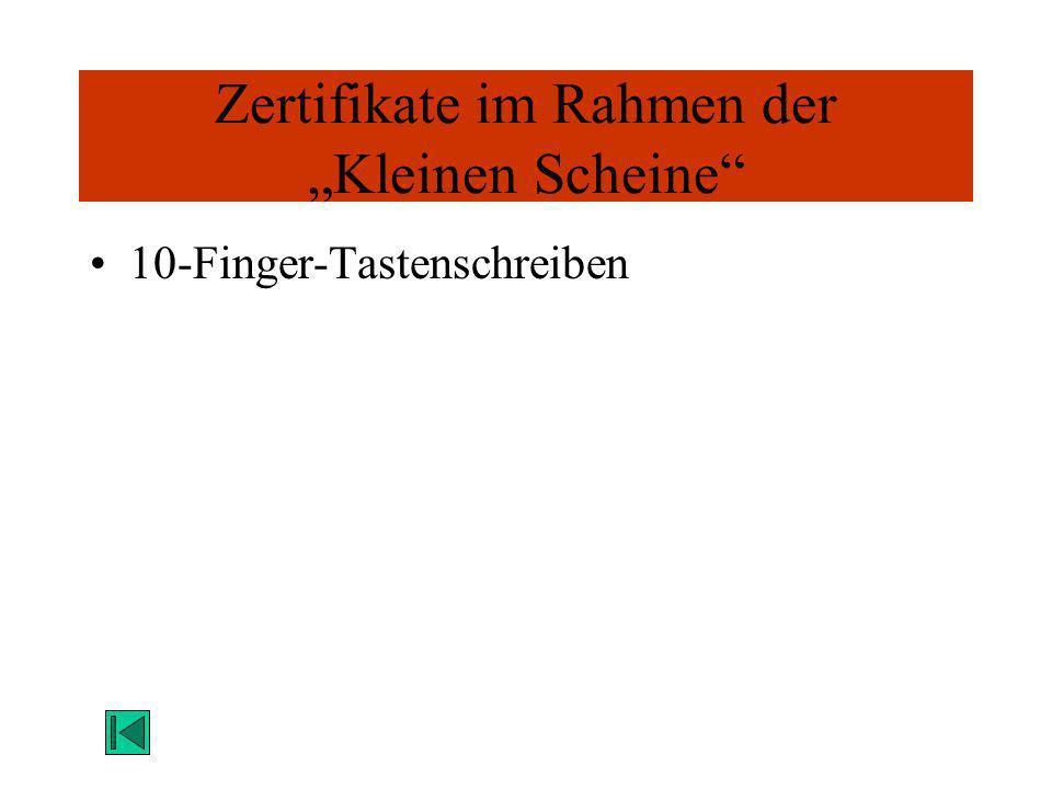 Zertifikate im Rahmen der Kleinen Scheine 10-Finger-Tastenschreiben