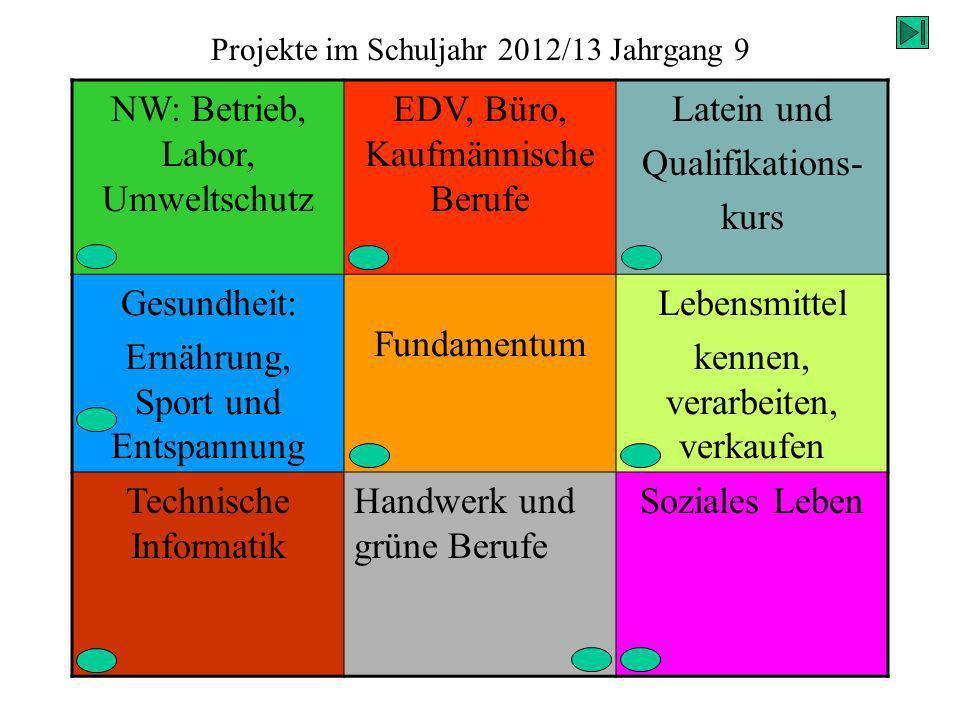 Projekte im Schuljahr 2012/13 Jahrgang 9 NW: Betrieb, Labor, Umweltschutz EDV, Büro, Kaufmännische Berufe Latein und Qualifikations- kurs Gesundheit: