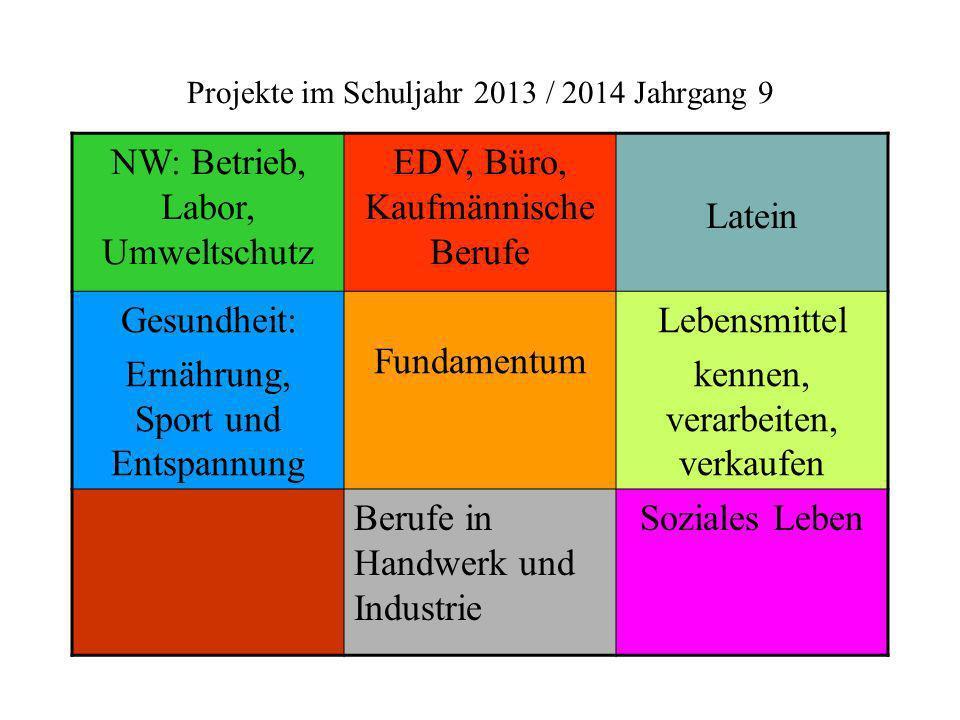 Projekte im Schuljahr 2013 / 2014 Jahrgang 9 NW: Betrieb, Labor, Umweltschutz EDV, Büro, Kaufmännische Berufe Latein Gesundheit: Ernährung, Sport und
