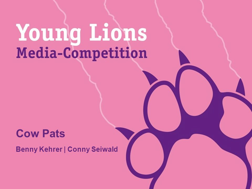 Young Lions 2011 Präsentation MEDIANAME: Benny Kehrer Ι Conny Seiwald INITIAL SITUATION Your project is terrific...