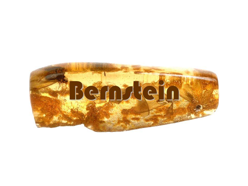 Bernstein ist......