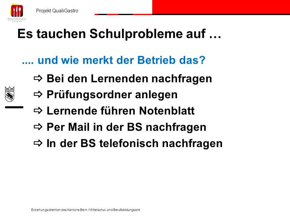 Projekt QualiGastro Erziehungsdirektion des Kantons Bern / Mittelschul- und Berufsbildungsamt Es tauchen Schulprobleme auf ….... und wie merkt der Bet