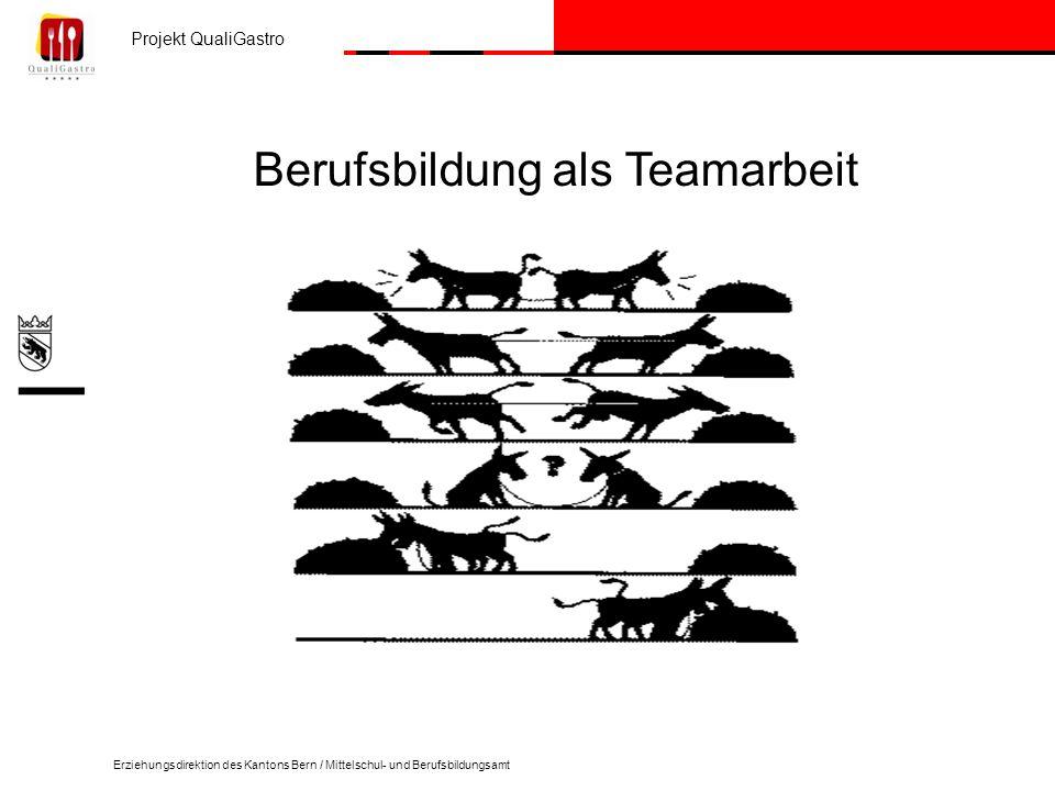 Projekt QualiGastro Erziehungsdirektion des Kantons Bern / Mittelschul- und Berufsbildungsamt Berufsbildung als Teamarbeit
