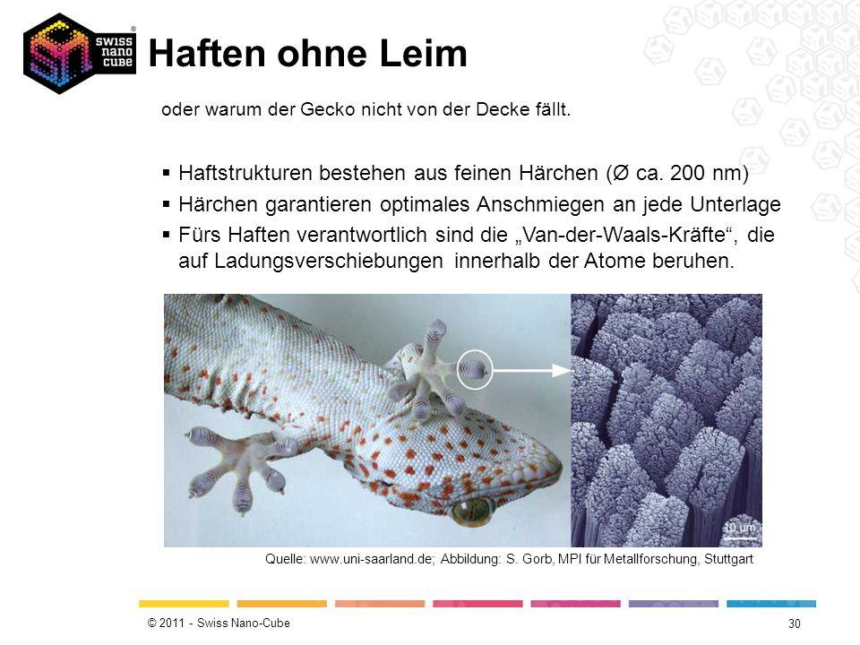 © 2011 - Swiss Nano-Cube Nie mehr schmutzig 29 Quelle: www.youtube.com/watch?v=pzGunZ1-POw oder warum das Lotusblatt immer sauber bleibt..