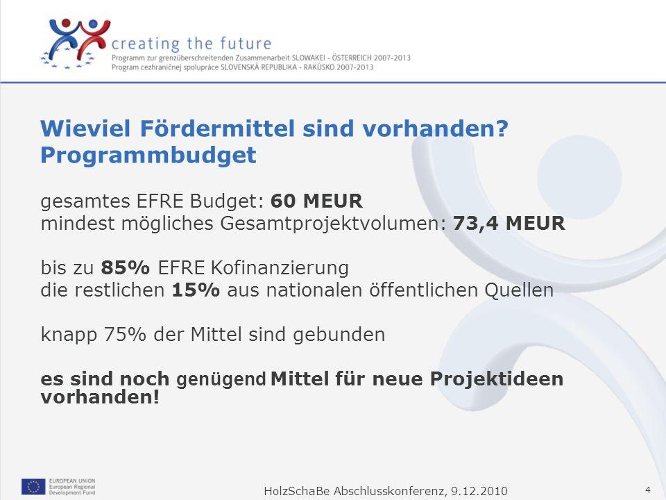 HolzSchaBe Abschlusskonferenz, 9.12.2010 4 gesamtes EFRE Budget: 60 MEUR mindest mögliches Gesamtprojektvolumen: 73,4 MEUR bis zu 85% EFRE Kofinanzier