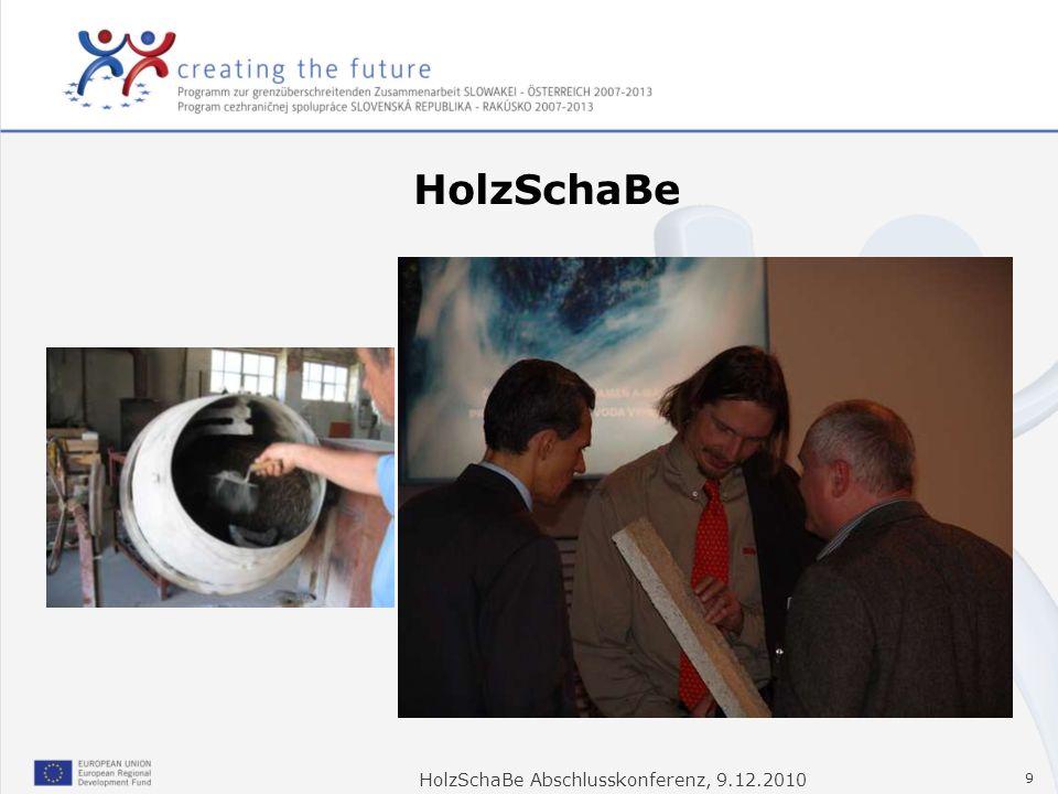HolzSchaBe Abschlusskonferenz, 9.12.2010 9 HolzSchaBe