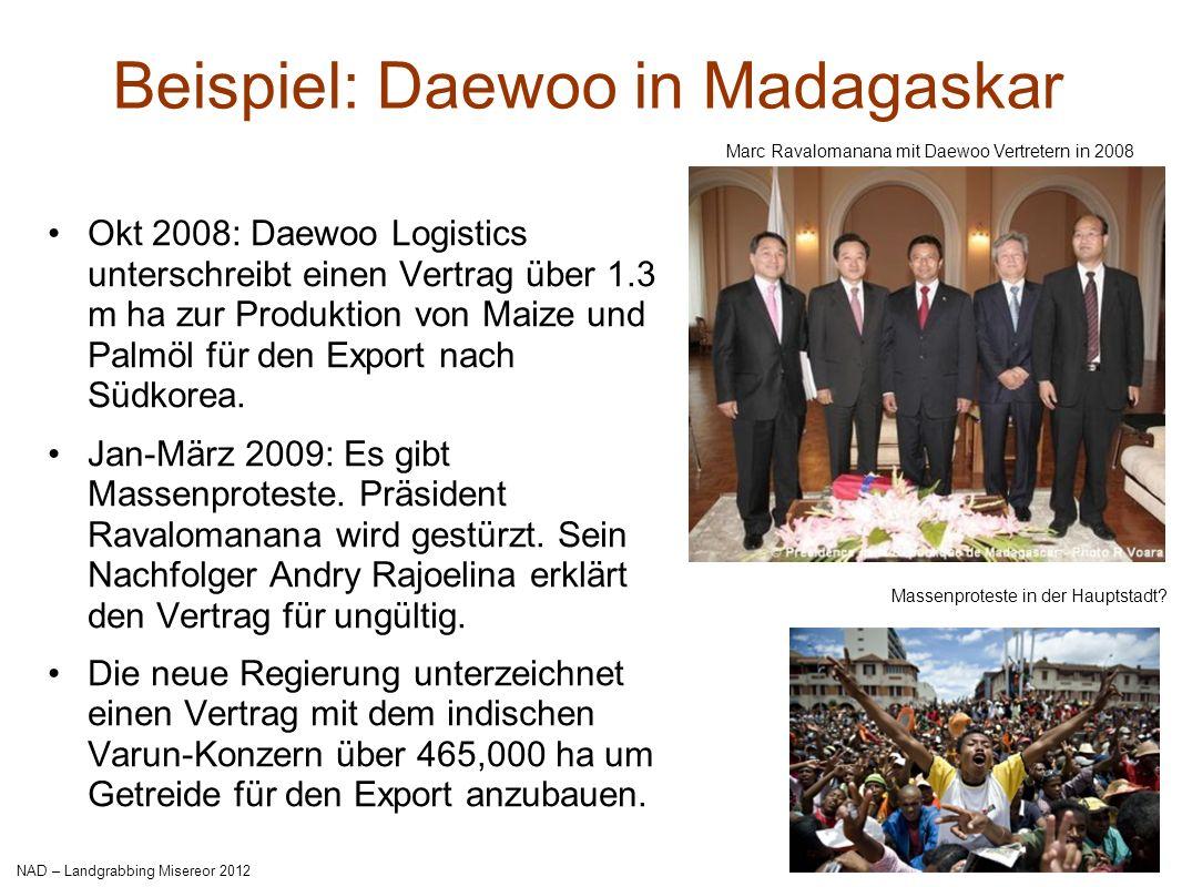 GRAIN | November 2009 Beispiel: Qatar-Kenya deal Jan 2009: Der kenianische Präsident gibt Katar eine Konzession von 40.000 ha in einem Feuchtgebiet am Tana Delta.
