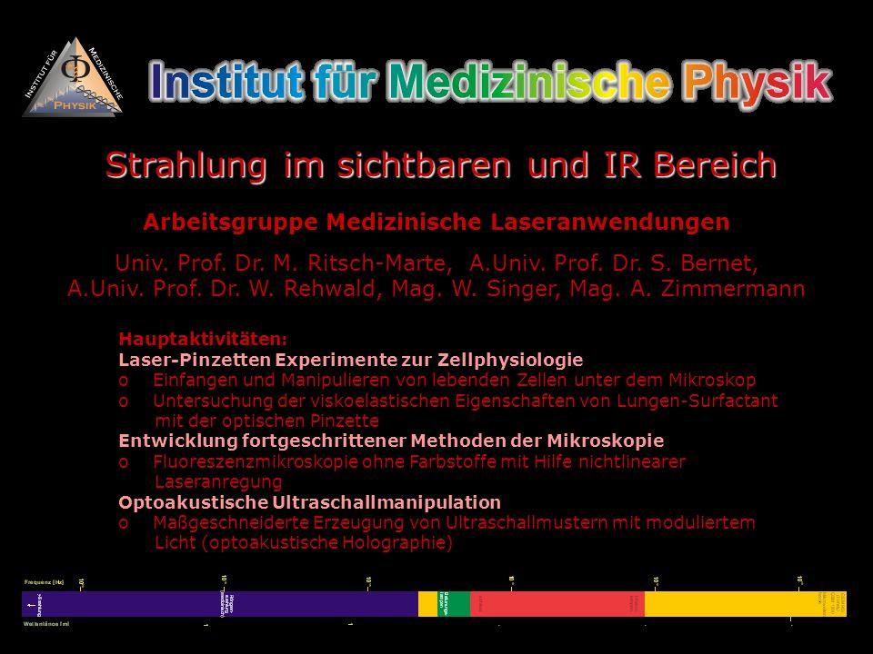 Arbeitsgruppe Medizinische Laseranwendungen Univ. Prof. Dr. M. Ritsch-Marte, A.Univ. Prof. Dr. S. Bernet, A.Univ. Prof. Dr. W. Rehwald, Mag. W. Singer