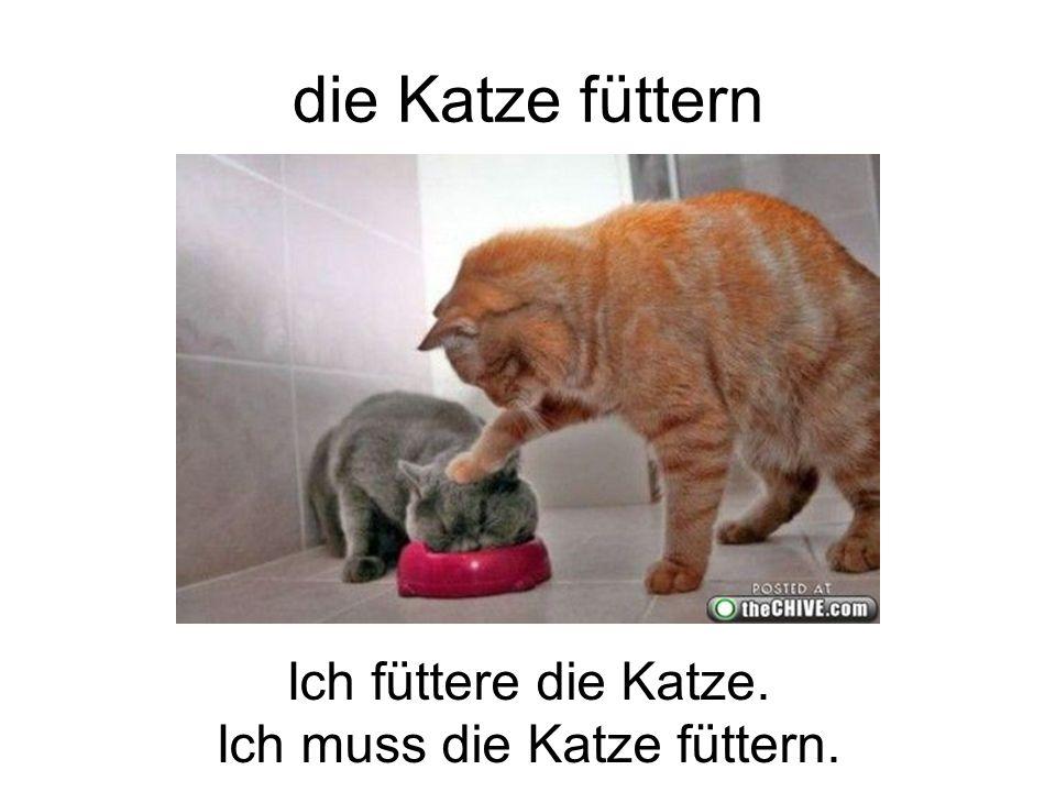 die Katze füttern Ich füttere die Katze. Ich muss die Katze füttern.
