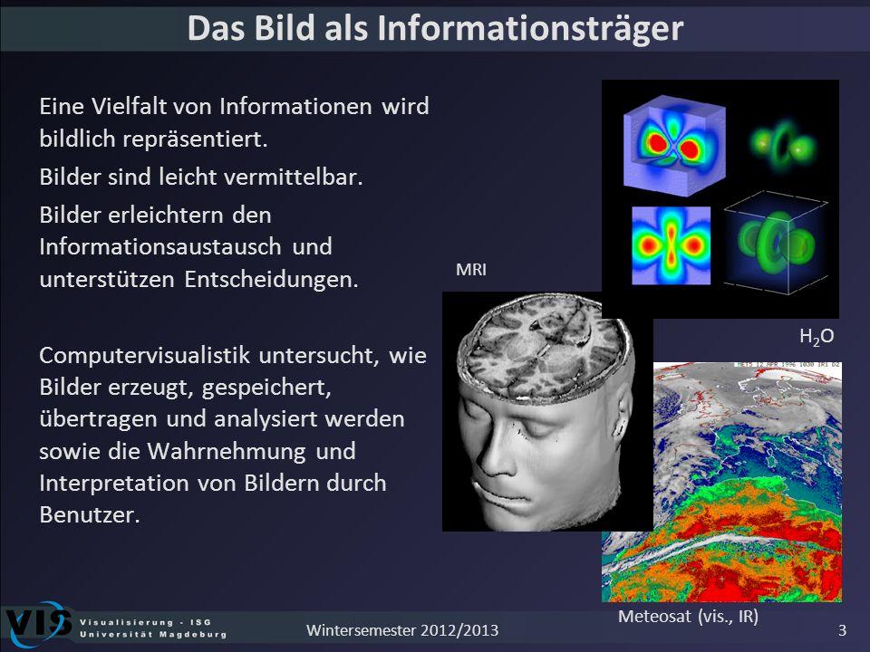 Bilder verstehen Bild vermittelt nicht automatisch relevante Information Bilder sind Resultat einer Dateninterpretation Quelle: www.wetteronline.de 4Wintersemester 2012/2013