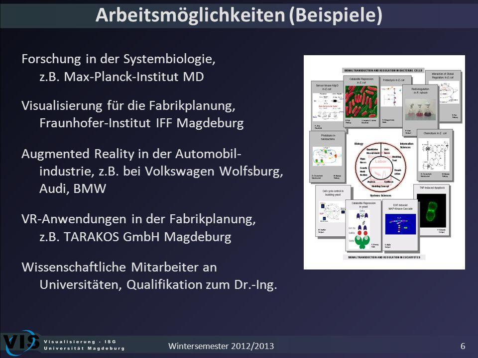 Arbeitsmöglichkeiten (Beispiele) Forschung in der Systembiologie, z.B. Max-Planck-Institut MD Visualisierung für die Fabrikplanung, Fraunhofer-Institu