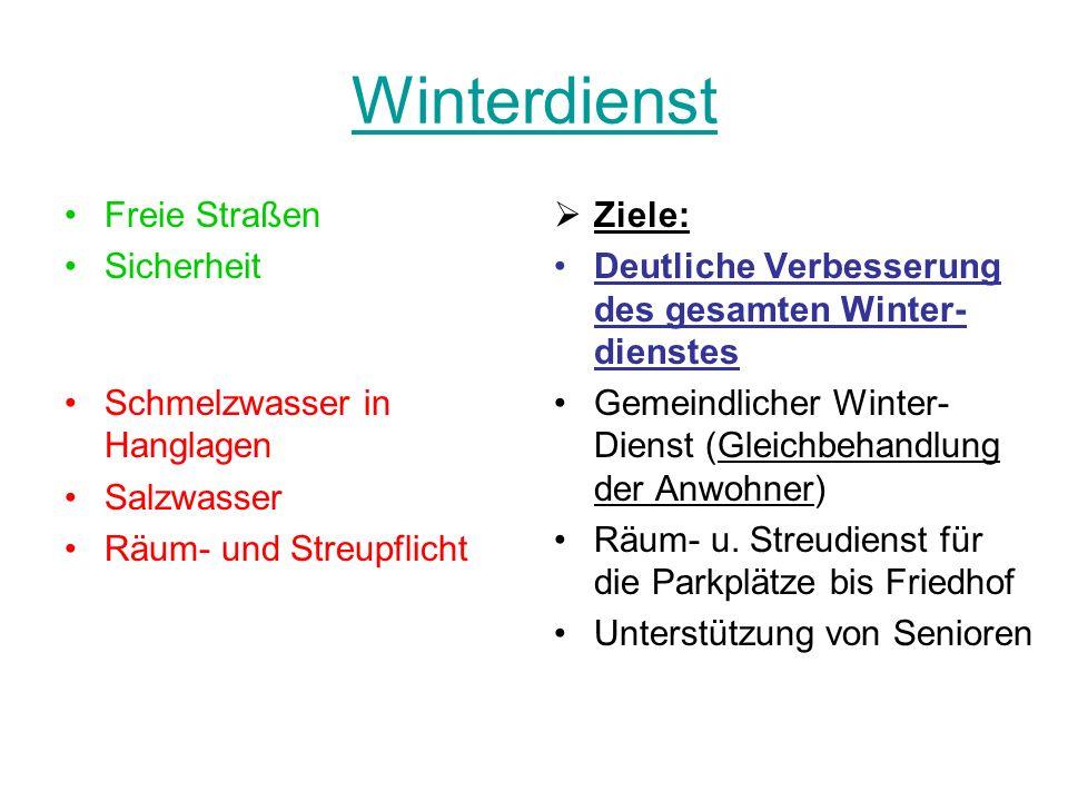 Winterdienst Freie Straßen Sicherheit Schmelzwasser in Hanglagen Salzwasser Räum- und Streupflicht Ziele: Deutliche Verbesserung des gesamten Winter-