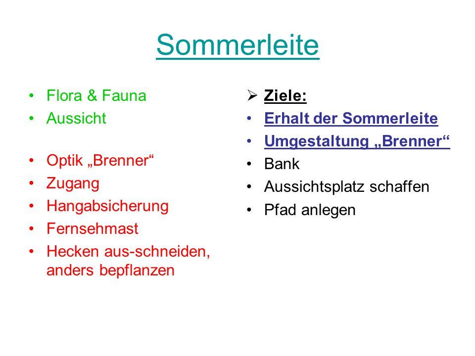 Sommerleite Flora & Fauna Aussicht Optik Brenner Zugang Hangabsicherung Fernsehmast Hecken aus-schneiden, anders bepflanzen Ziele: Erhalt der Sommerle