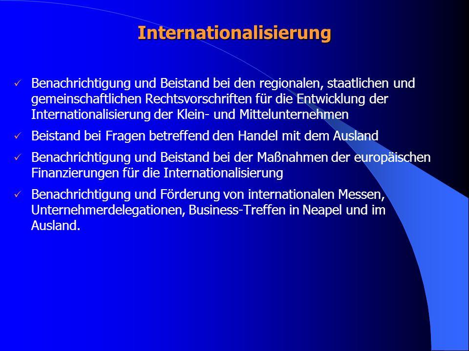 Internationalisierung Benachrichtigung und Beistand bei den regionalen, staatlichen und gemeinschaftlichen Rechtsvorschriften für die Entwicklung der