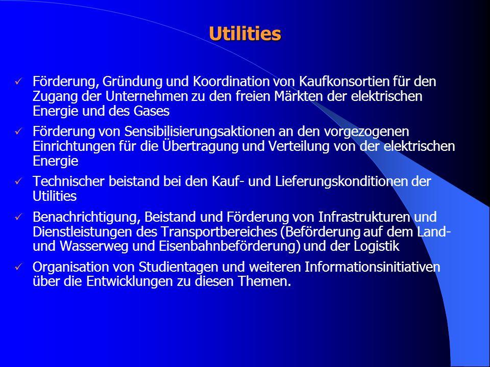 Utilities Förderung, Gründung und Koordination von Kaufkonsortien für den Zugang der Unternehmen zu den freien Märkten der elektrischen Energie und de