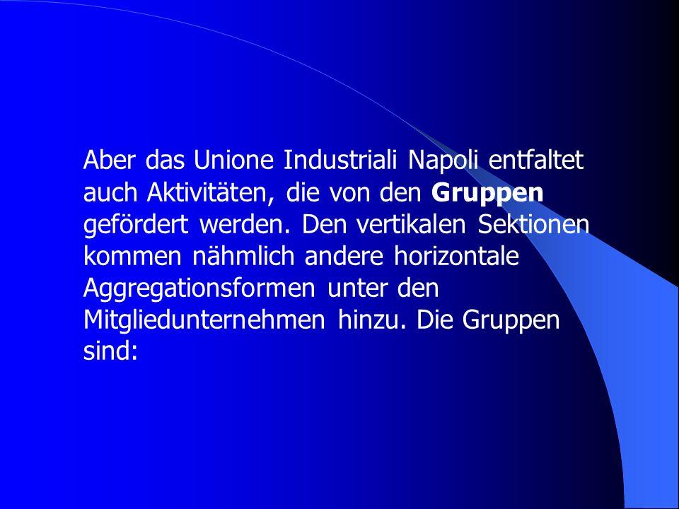 Aber das Unione Industriali Napoli entfaltet auch Aktivitäten, die von den Gruppen gefördert werden. Den vertikalen Sektionen kommen nähmlich andere h