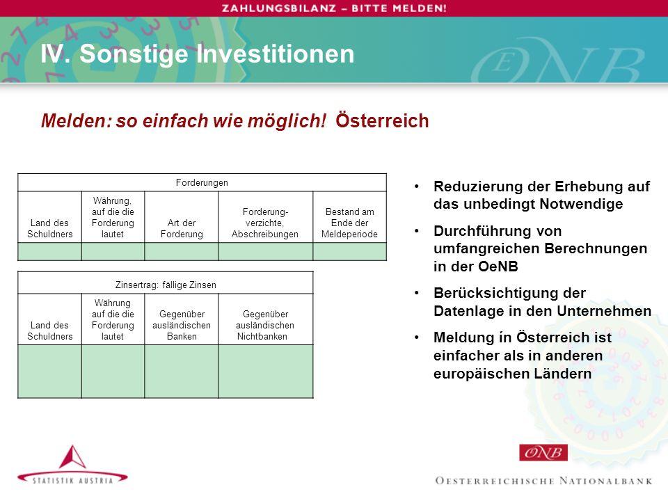 IV. Sonstige Investitionen Melden: so einfach wie möglich.